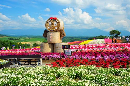 爱在北海道